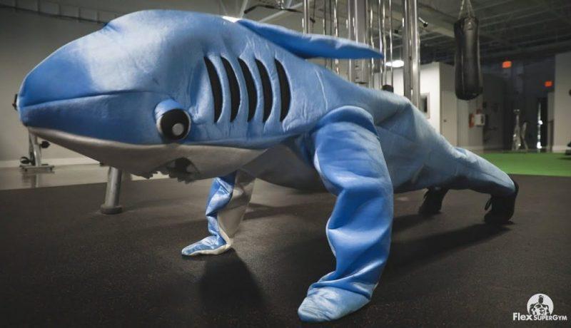 Flex Supergym Shark Week 2020